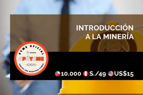 Introducción a la Minería: Subterránea